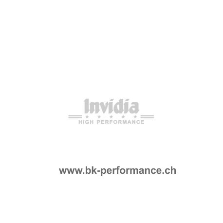 Invidia Auspuffanlage Honda civic FN1